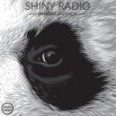 Shiny Radio - Panda\'s Anthem (Original mix)