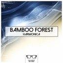 Bamboo Forest - Shroeder Diffracteur  (Original mix)