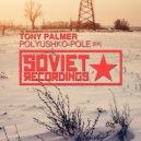 Tony Palmer - Pole (Radio Mix)