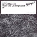 David Museen - Whoop (Original Mix)