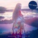 Birdy - Keeping Your Head Up (Steerner Bootleg)
