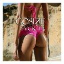 Gosize - Fvck ya (Original mix)