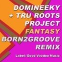 Domineeky & Tru Roots Project - Fantasy (24900 Miles From Home Version)