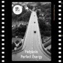 Fedyanin - Perfect Energy