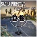 Sasha PRimitive - I Don't Wanna Miss