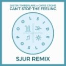 Justin Timberlake x Chris Crone - Can\'t Stop The Feeling (SJUR Remix)
