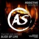 JT, Tyler Wildman - Slice of Life (jT Remix)