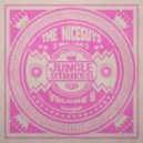 The Niceguys & Turntill feat Silver Cat - Rub A Dub Party (Original mix)