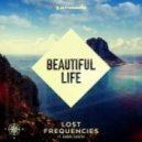 Lost Frequencies feat. Sandro Cavazza - Beautiful Life (Original Mix)
