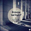 Drzneday - Soul Trap (Ondrej Semyrka Remix)