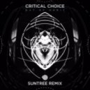 Critical Choice - Out Of Orbit