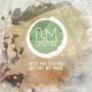 Pete Kaltenburg, Stephan Licha - Makin' Me (Original Mix)