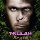 T-killah - Обезьяны (SheffeRSounD remix)