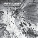 Mario Hammer & The Lonely Robot - Misodoctakleidist (Mario Hammer And The Lonely Robot Vinyl Edit)