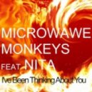 Microwave Monkeys feat. Nita - I've Been Thinking About You (Original Mix)