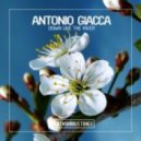 Antonio Giacca - Down Like the River (Original Mix)