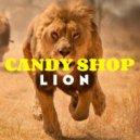 Candy Shop - Lion (Original Mix)