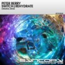 Peter Berry - Switch (Original Mix)