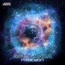 Amygdala - Procyon Conduit (Original Mix)