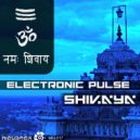 Electronic Pulse - Shivaya
