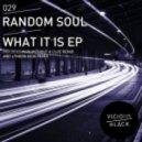 Random Soul - What It Is (Original Mix)