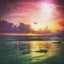 Cosmic EFI - Sunstroke  (Original Mix)