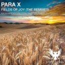 Para X - Fields Of Joy (Fredd Moz Remix)