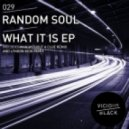 Random Soul - What It Is (Lyndon Kidd Remix)