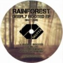 Rainforest - Push Dem Aside (Original Mix)