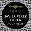 Javier Perez - Delta Acuaridas (Original mix)