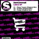JamLimmat - Playa Tucam (Original mix)