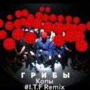 Грибы - копы (I.T.F Remix)