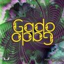 Samadhi - Gili' S Hexagon (Original mix)