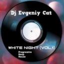 Dj Evgeniy Cat - White night (vol.1)