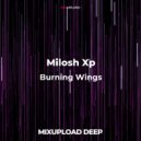 Milosh Xp  - Burning wings (Original mix)