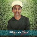PhonixDaK - Happiness In Me