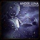 Ander Luna - Woodpecker (original mix)