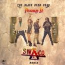 Black Eyed Peas - Pump It (SWACQ Remix)