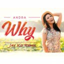 Andra - Why (Jay Ko Remix) [Extended Version])