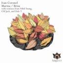 Ivan Coronel - Brisa (Dale T Remix)