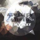 Aurelien Stireg - Dream (Original mix)