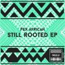 Pex Africah - The Tribal Messiah  (Original Mix)