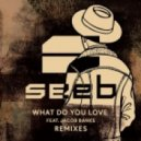 Seeb Ft. Jacob Banks - What Do You Love (Zonderling Remix)