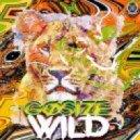 Gosize - Wild (Original mix)