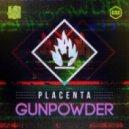 Placenta - Broken Walls (Original mix)