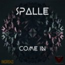 Spalle - Come In