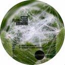Felipe Noboa & Alejandro Cuestas - Organic Rain (Alejandro Cuestas Remix)