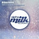 Hibernate - Cool It's Snowing (Matan Caspi Remix)