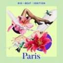 Henri, Anita Briem  -  Fine Day  (Henri\'s Monstertooth Mix)