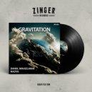 Daniil Waigelman, Nadya - Gravitation (Original mix)